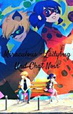 Miraculous- Ladybug Und Chat Noir by Eihposeemia