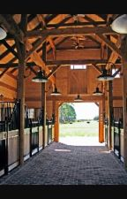 Horse Stable Rp (Invite Only) by Spunkyhorse14