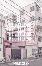 THE LITTLE BIRD  ⤐  PETER PAN by BiscuitMorgan