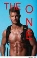 THE ONE (Book 3 of PI series) by SleeplessInChicago