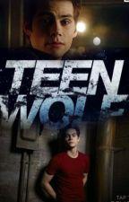 teen Wolf ( stiles y tu) by sobarji