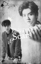 Elevated Scars 「HunHan」 by PastelWolf88