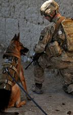 The Army Dog.  by Colorful_Rose