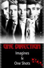 One Direction Imagines and One Shots [ON HOLD] by disguisedirectioner