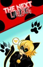 The next Ladybug {Chat Noir X reader}  by Xchatnoir
