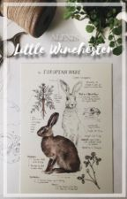 Little Winchester || Dean's Daughter by LexiLove567