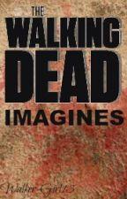 The Walking Dead GIF Imagines {Complete} by Walker_Girl13