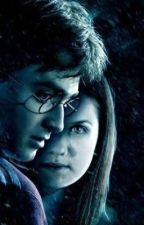 (Complete)Albus severus potter and the global revelation  by GautamBedi