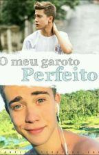 O Meu Garoto Perfeito (Luiz Mariz) by thuthu_caa