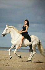 Koně a my by AbbeyTanner