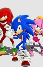 Sonic Günlükleri by pickupthisknifeu