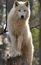 Белият вълк by wechnalybof