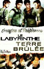♥ Imagines~Préférences. Le Labyrinthe/La Terre Brûlée ♥ by Crazyiix