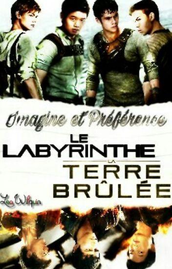 ♥ Imagines~Préférences. Le Labyrinthe/La Terre Brûlée ♥