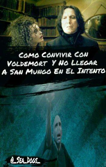 Como Convivir Con Voldemort Y No Llegar A San Mungo En El Intento
