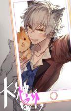 Claws (Neko Boy X Reader) by sensama