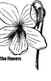 The Flowers by SirRunsaLot