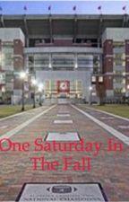 One Saturday in the Fall by baseballfan8