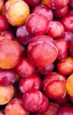 the plum fic  by joshdunmyass