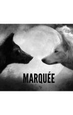 MARQUÉE by sojeps