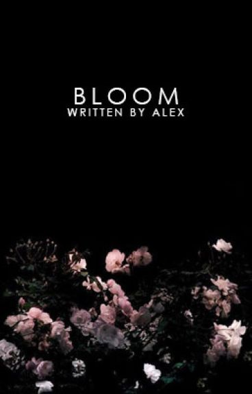 bloom ➸ h. granger