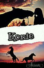Konie by Abisiowa