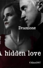 Dramione - A Hidden Love (Nederlands) by WICELA
