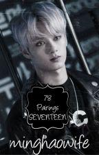 78 Pairings SEVENTEEN by minghaowife