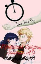 Time Gone By (Miraculous Ladybug Soulmate AU) by OtakuAnimeFan123