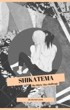 [ShikaTema] The Thirty Day Challenge by Blanchefleur