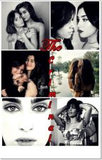 The Criminal- Camren by luanakerley