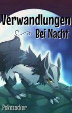 Pokémon - Verwandlungen bei Nacht by PokeZocker