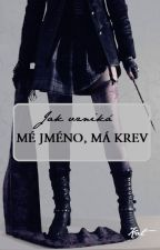 Jak vzniká Mé jméno, má krev by MeJmenoMaKrev