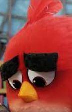 Angry birds. When we don't listen  by SondosKhadidja