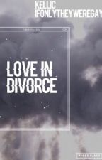 Love In Divorce by ifonlytheyweregay