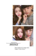 bridge ➡ n.m by keepnut