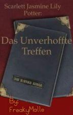 Scarlett Jasmin Lily Potter - Das unverhoffte Treffen by FreakyMalle