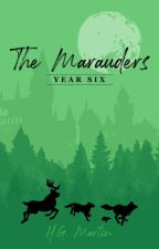 The Marauders: Year Six by Pengiwen