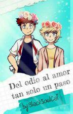 Del Odio Al Amor Hay Solo Un Paso by BlackSoulCat