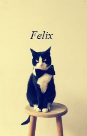 Felix (manxman) ON HOLD by katnappin