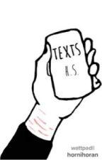 TEXTS H.S (Arabic Translation) by Lann_msk