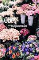Obey | Muke  by babybearmuke