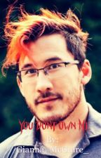 Do you own me?MarkiplierXreader by Gianna_McGuire_