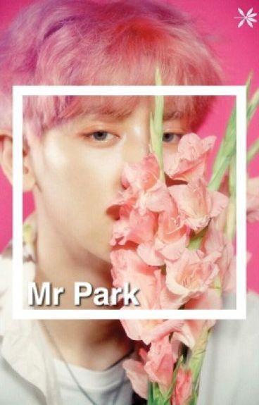 Mr.Park   Chanbaek