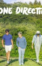 One Direction fantasies by emrystyles