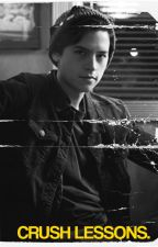 (COMING SOON) how to make your crush fall in love ↳ cole sprouse by iMahone