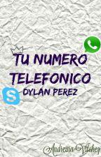 •Tu Número Telefónico(Dylan Perez)•PAUSADA• by Djtfan__