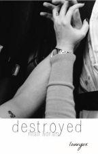 DESTROYED | N.H ✖️ by iBabyflyu