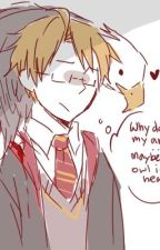 Hetalia Meets Hogwarts: The Philosopher's Stone by iamaquaffle143