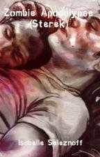 Zombie Apocalypse * Sterek  by Patnis